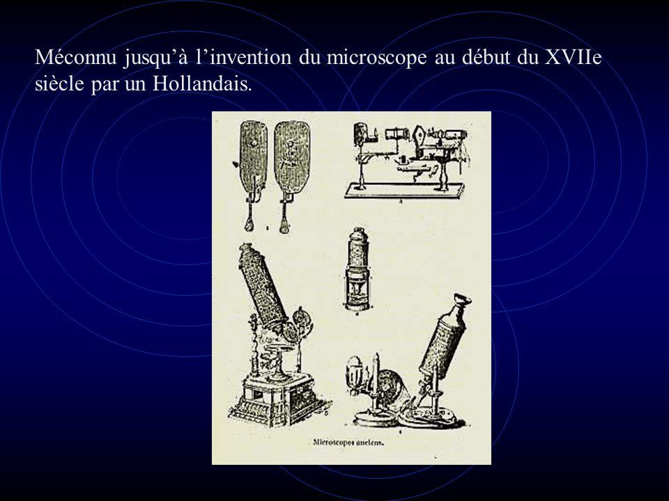 Méconnu jusqu'à l'invention du microscope au début du XVIIe siècle par un Hollandais.