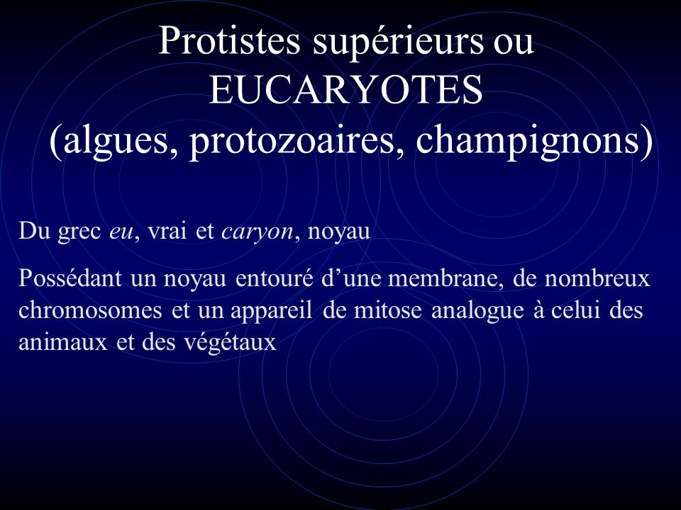Protistes supérieurs ou EUCARYOTES (algues, protozoaires, champignons)