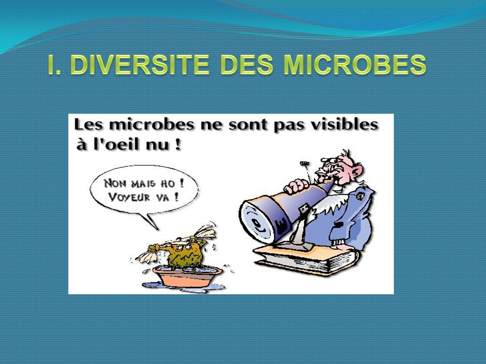 I. DIVERSITE DES MICROBES