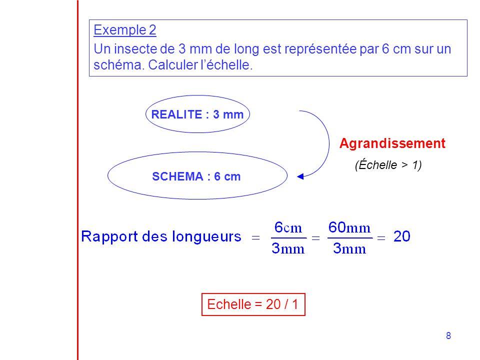 Exemple 2 Un insecte de 3 mm de long est représentée par 6 cm sur un schéma. Calculer l'échelle. REALITE : 3 mm.