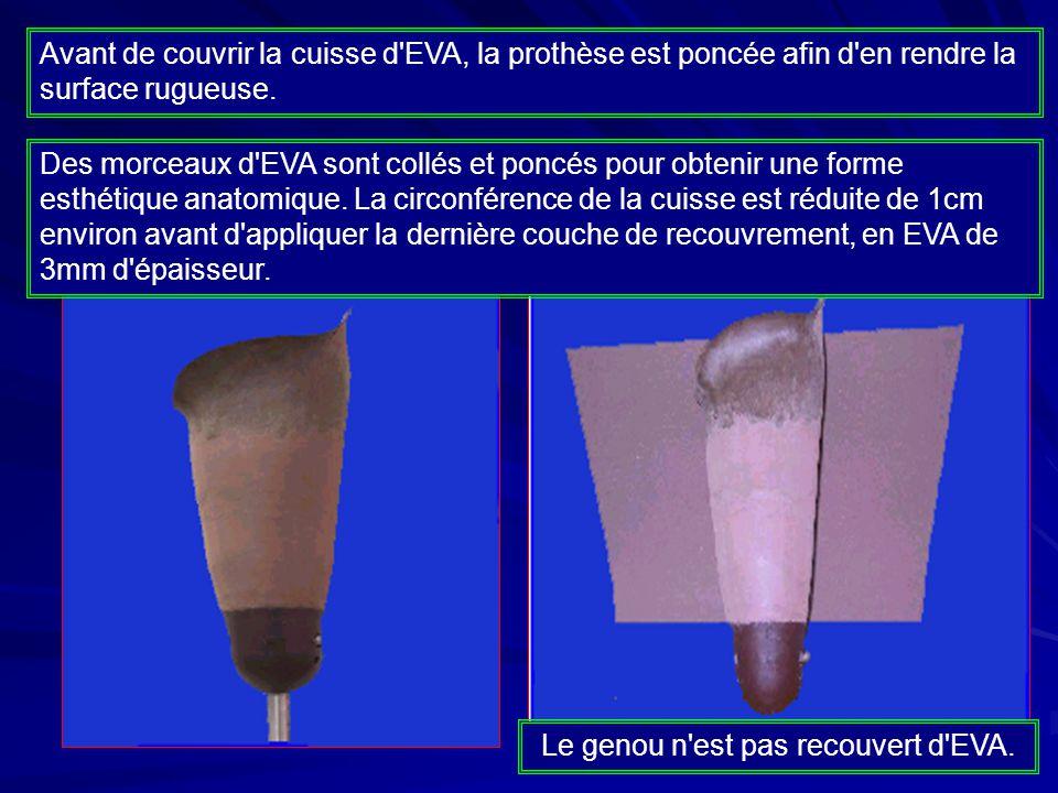 Le genou n est pas recouvert d EVA.