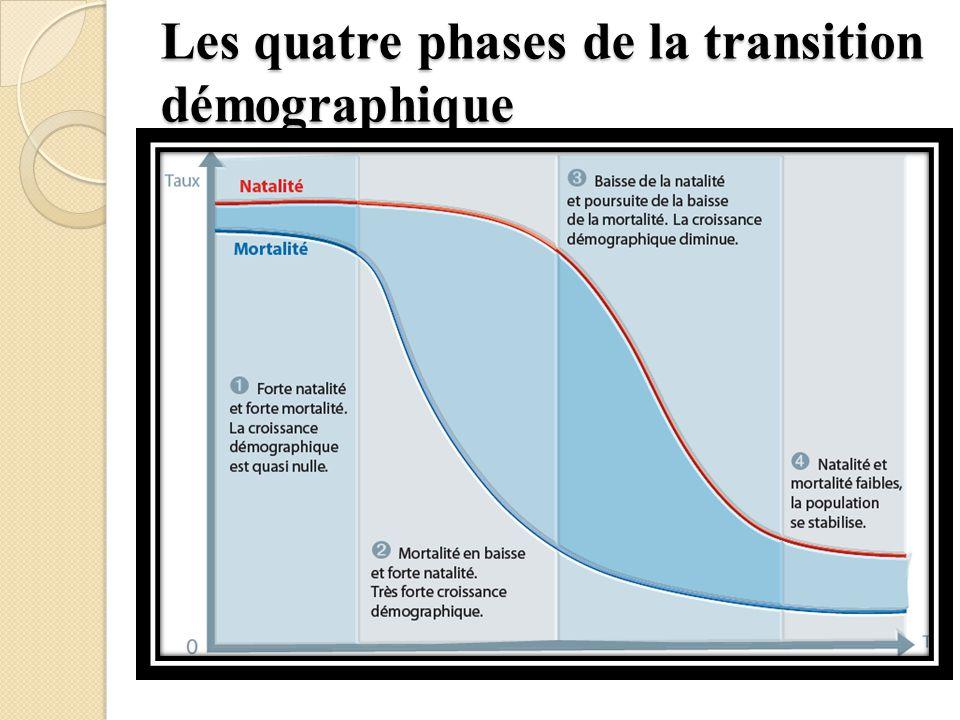 Les quatre phases de la transition démographique