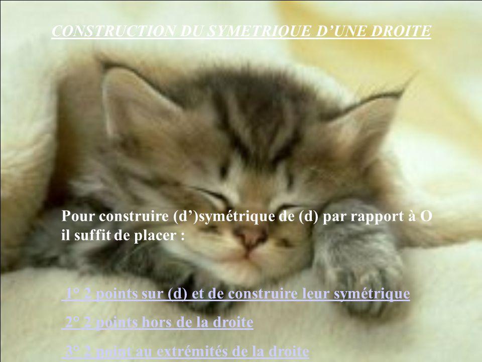 CONSTRUCTION DU SYMETRIQUE D'UNE DROITE