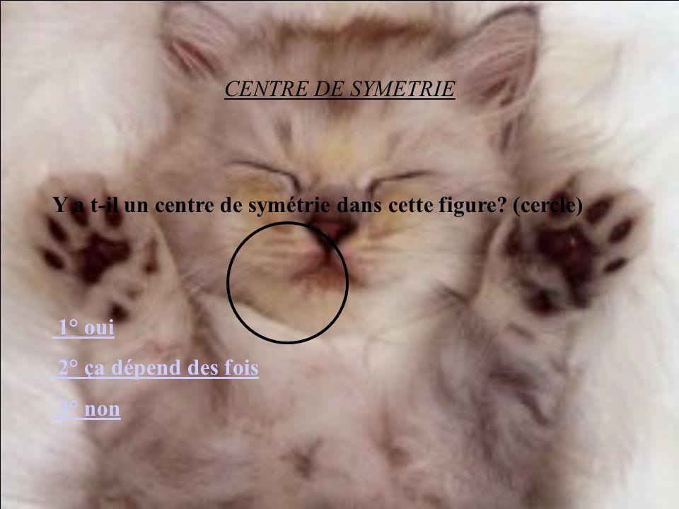 CENTRE DE SYMETRIE Y a t-il un centre de symétrie dans cette figure (cercle) 1° oui. 2° ça dépend des fois.