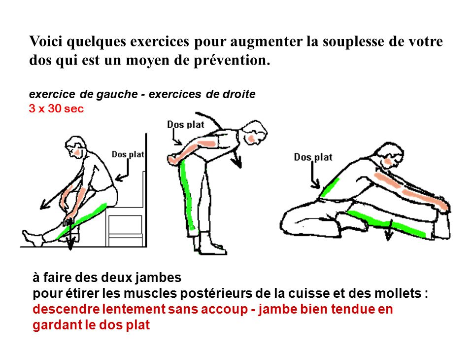 Voici quelques exercices pour augmenter la souplesse de votre dos qui est un moyen de prévention.
