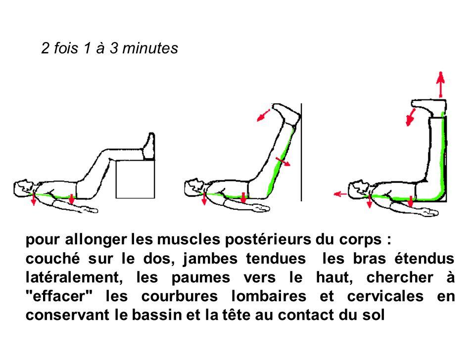 2 fois 1 à 3 minutes pour allonger les muscles postérieurs du corps :