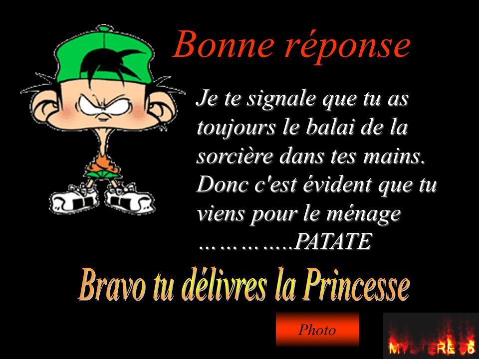 Le jeu du ch teau maudit ta mission est de d livrer la princesse ppt t l charger - Reponse la princesse ...