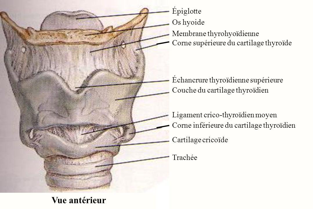 Ziemlich Anatomie Der Hölle 2004 Bilder - Anatomie Ideen - finotti.info