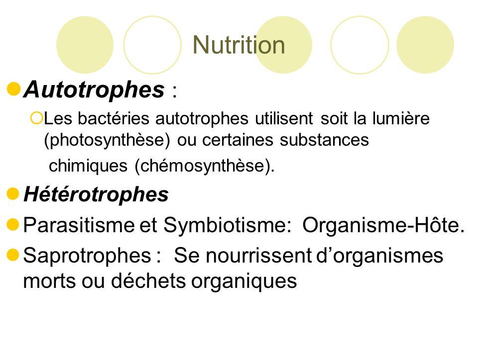 Nutrition Autotrophes : Hétérotrophes