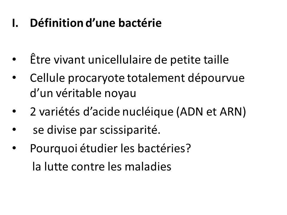 Définition d'une bactérie