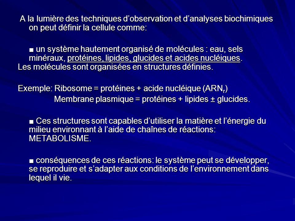 A la lumière des techniques d'observation et d'analyses biochimiques on peut définir la cellule comme: