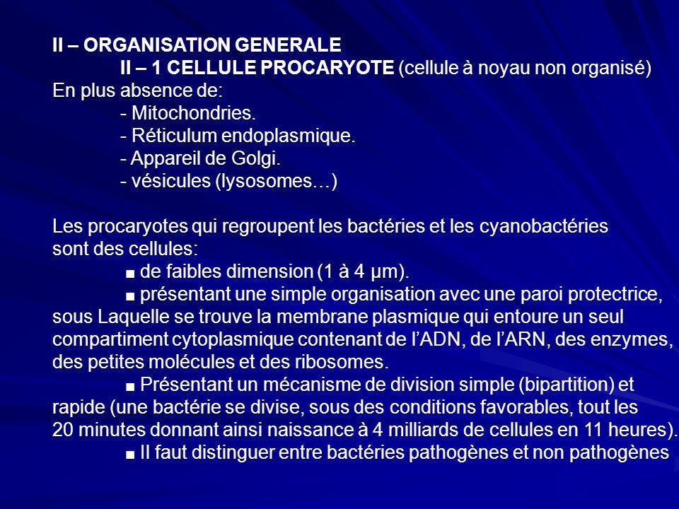 II – ORGANISATION GENERALE