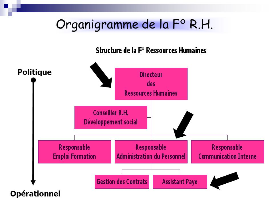 Des ressources humaines ppt video online t l charger for Organigramme online