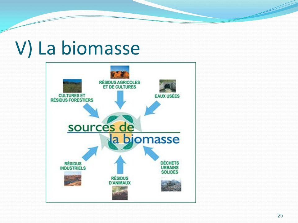 V) La biomasse