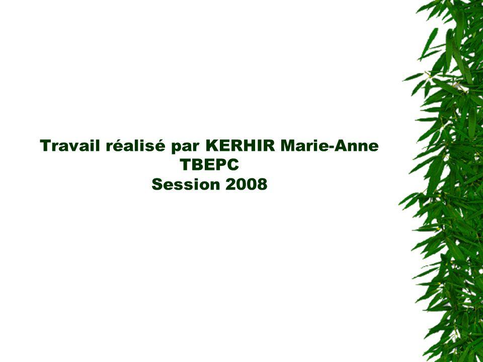 Travail réalisé par KERHIR Marie-Anne TBEPC Session 2008