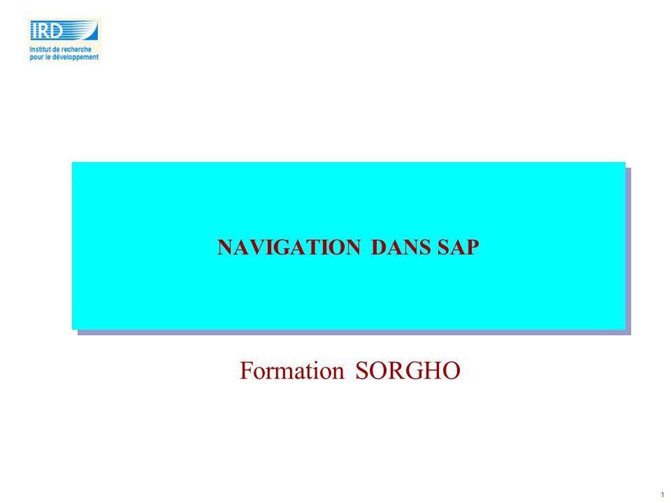 NAVIGATION DANS SAP Formation SORGHO