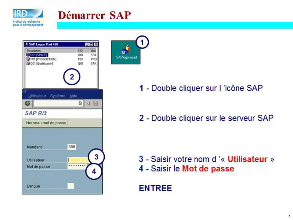 Démarrer SAP