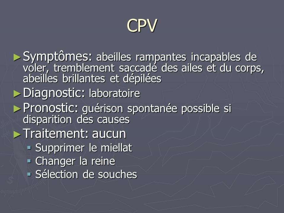 les virus de l abeille ppt video online t l charger