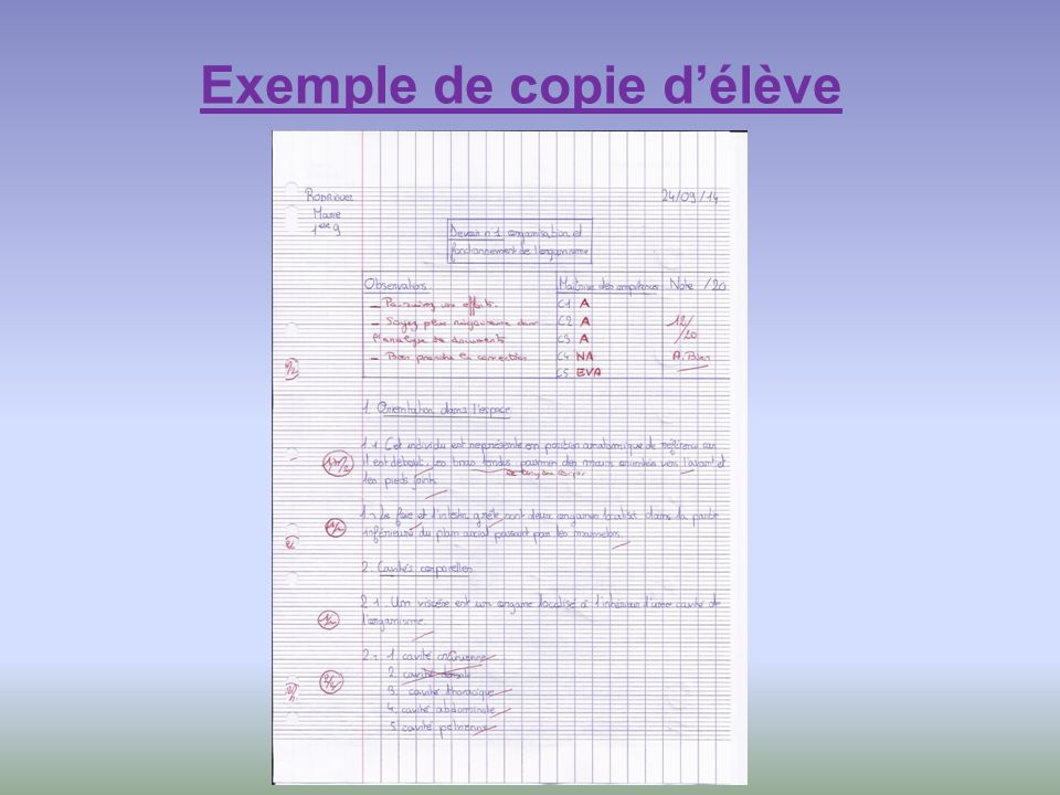 Exemple de copie d'élève