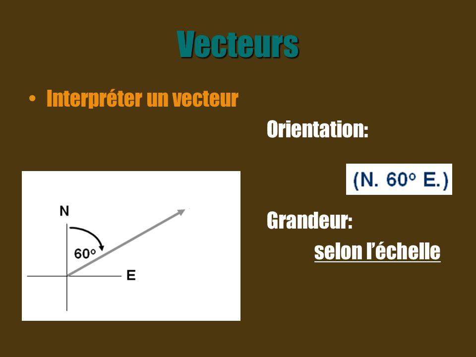 Vecteurs Interpréter un vecteur Orientation: Grandeur: selon l'échelle