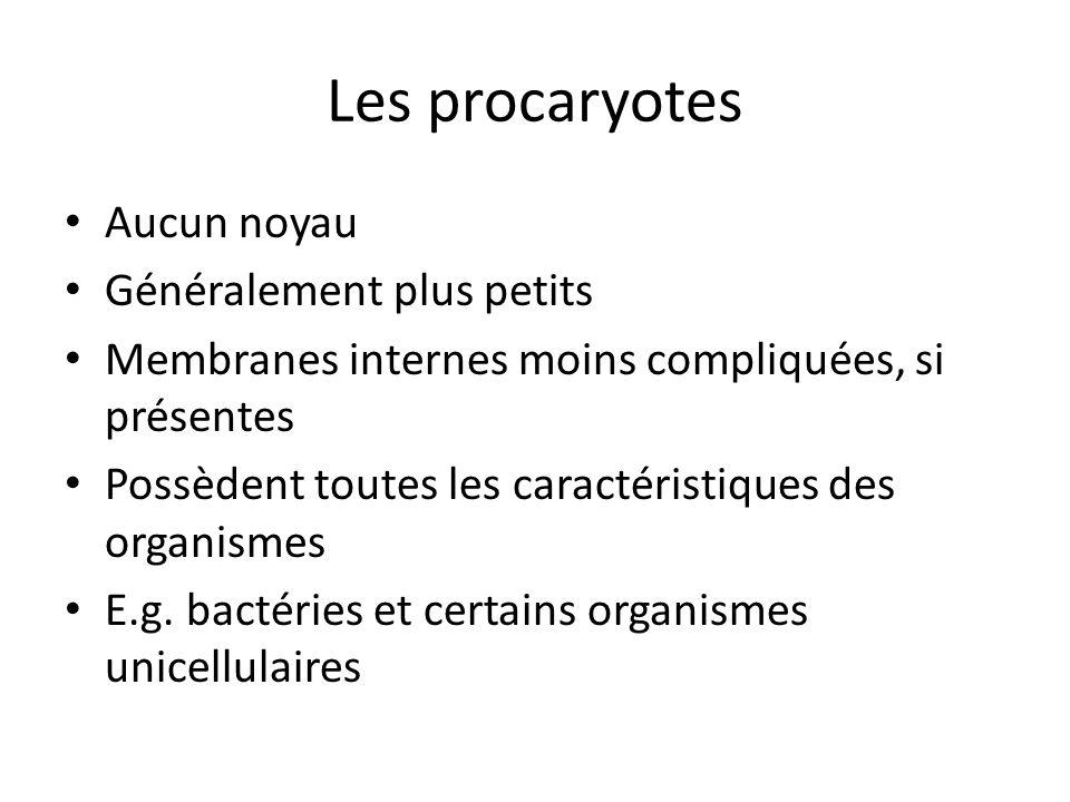 Les procaryotes Aucun noyau Généralement plus petits