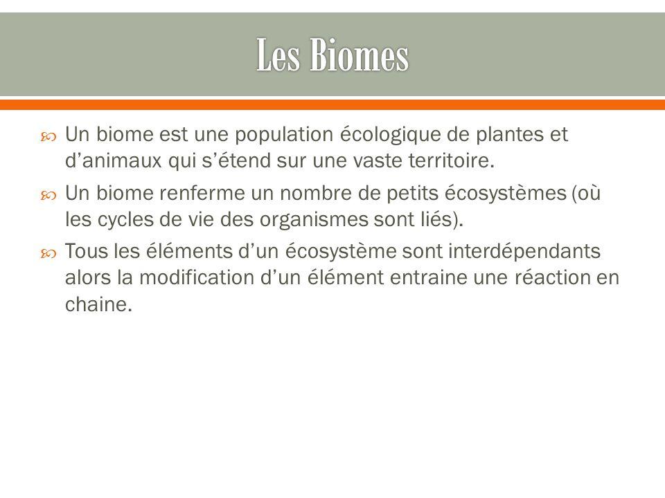 Les Biomes Un biome est une population écologique de plantes et d'animaux qui s'étend sur une vaste territoire.