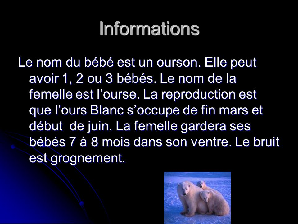 ours blanc le nom de notre animal est ours blanc ppt video online t l charger. Black Bedroom Furniture Sets. Home Design Ideas