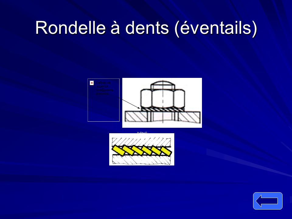 Rondelle à dents (éventails)