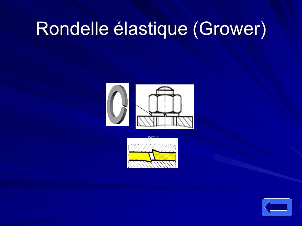 Rondelle élastique (Grower)