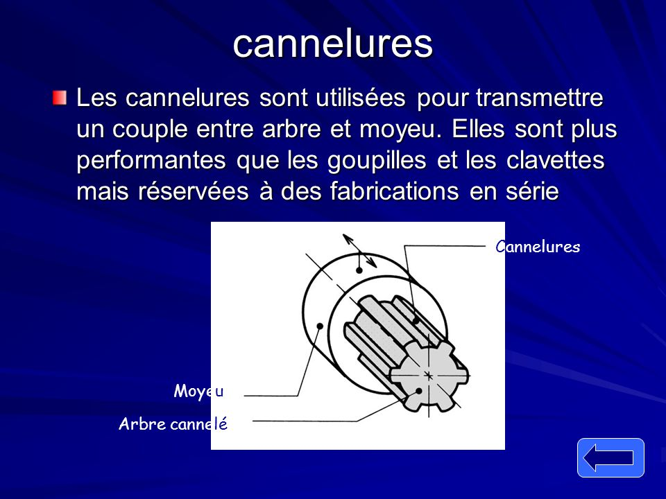 cannelures