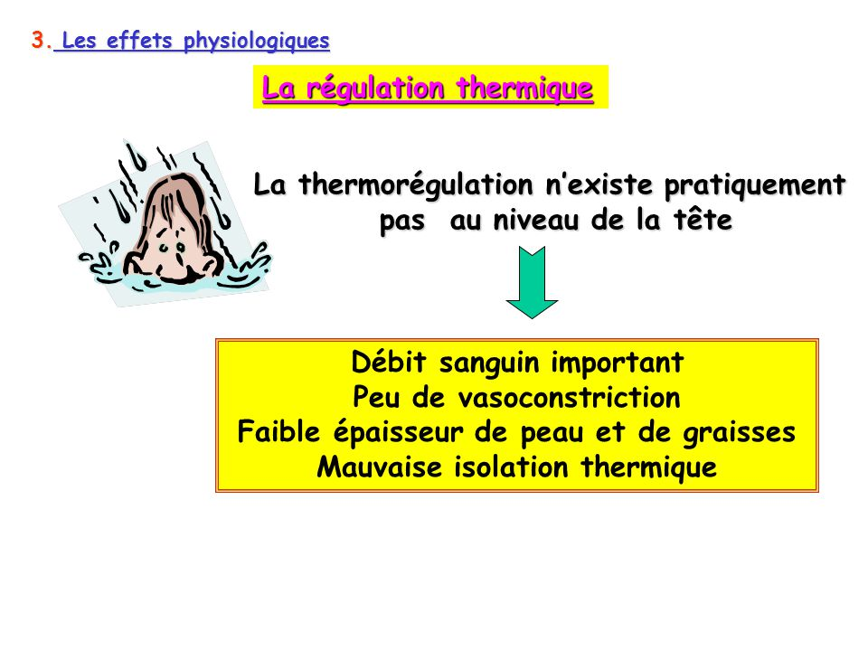 Le froid ppt t l charger - Mauvaise isolation thermique ...