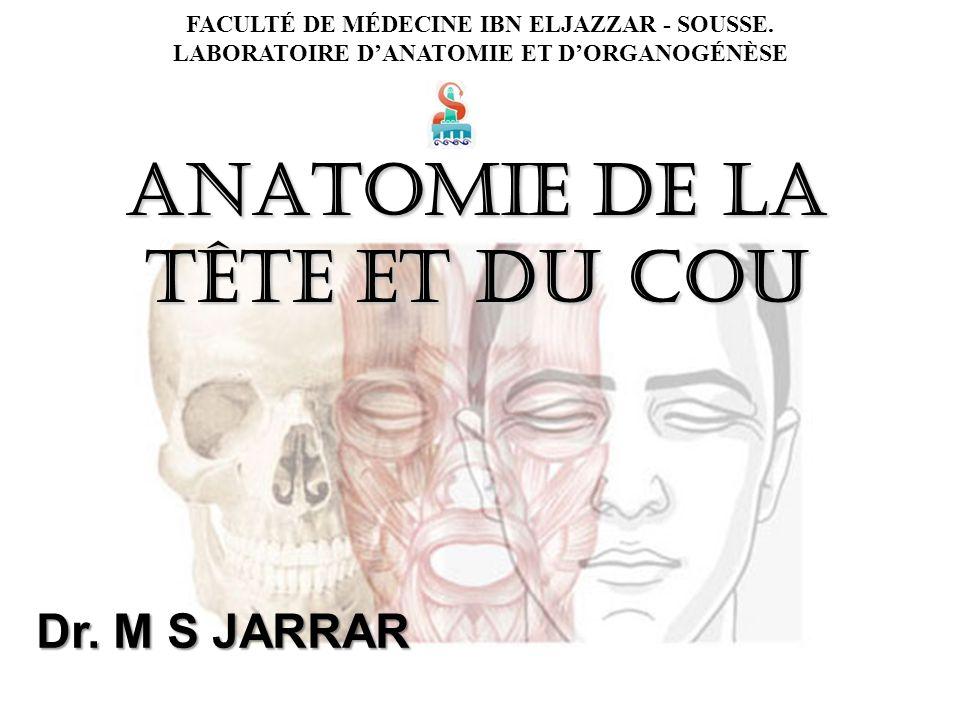 Ausgezeichnet Grau Anatomie Zitiert Meredith Narration Fotos ...