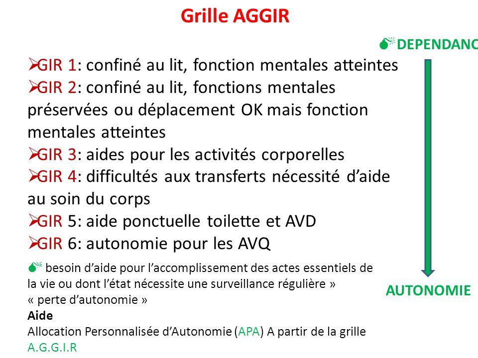Ed du module 5 22 10 10 dr elsa dumont pougnier pr bruno lesourd ppt video online t l charger - Definition de la grille aggir ...