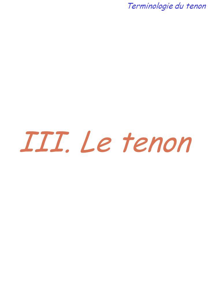 Terminologie du tenon III. Le tenon