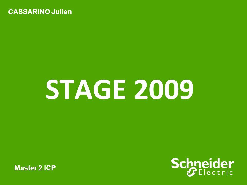 CASSARINO Julien STAGE 2009 Master 2 ICP
