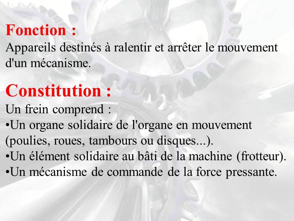Constitution : Fonction :
