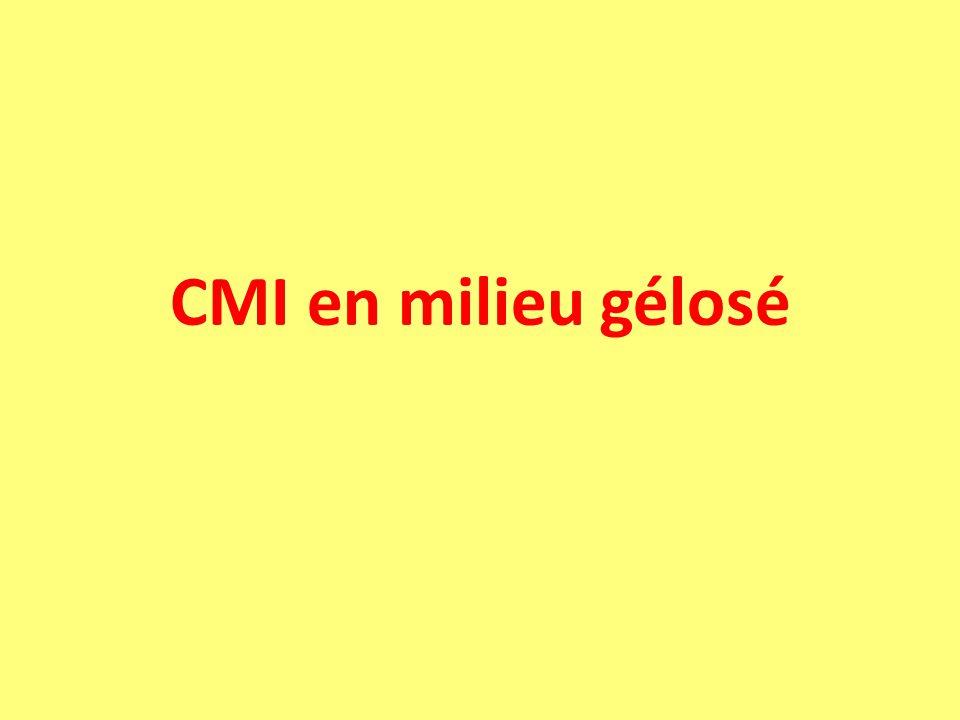 CMI en milieu gélosé
