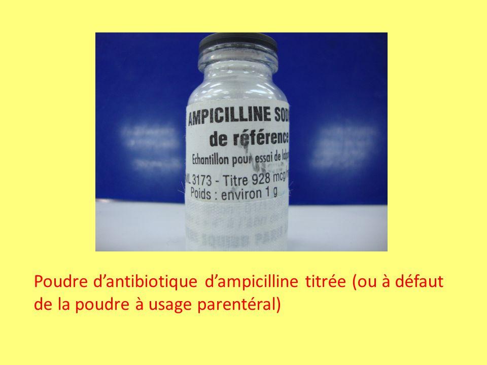 Poudre d'antibiotique d'ampicilline titrée (ou à défaut de la poudre à usage parentéral)