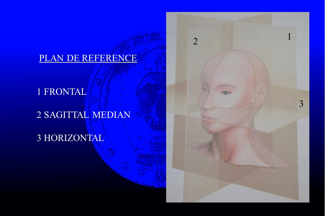 1 2 PLAN DE REFERENCE 1 FRONTAL 2 SAGITTAL MEDIAN 3 HORIZONTAL 3