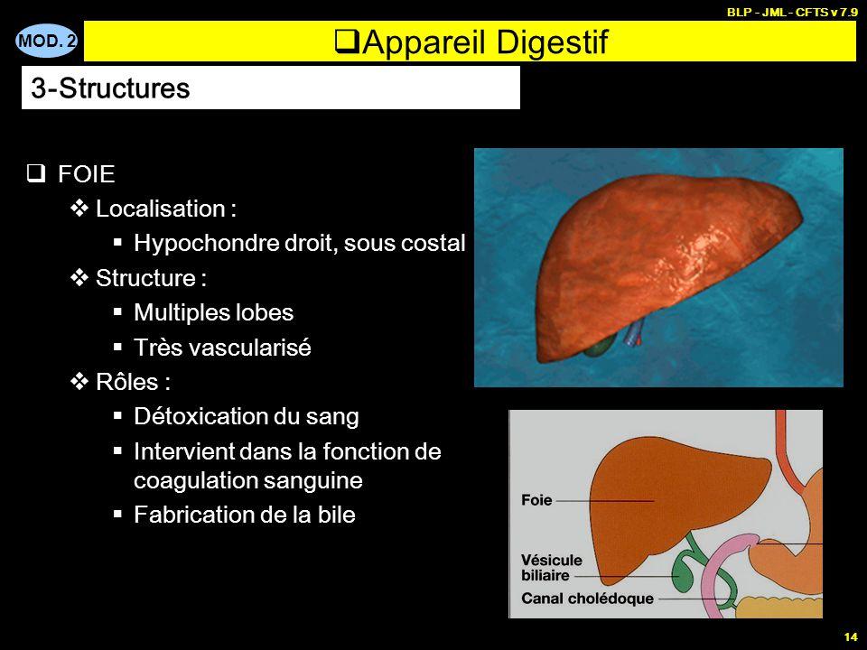 Appareil Digestif 3-Structures FOIE Localisation :