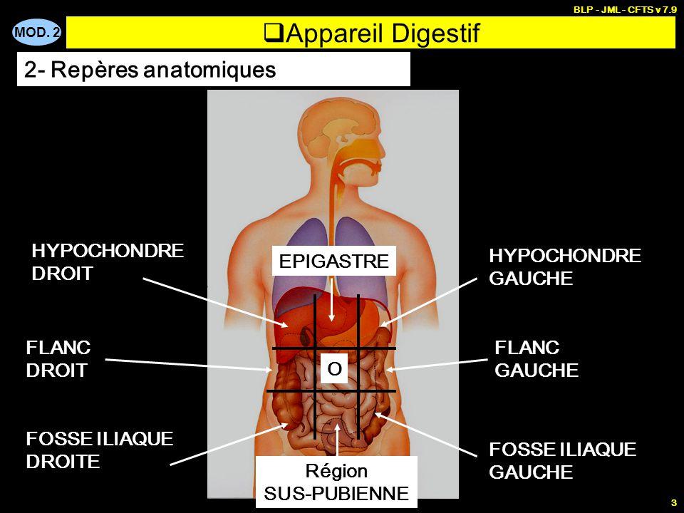 Appareil Digestif 2- Repères anatomiques HYPOCHONDRE DROIT