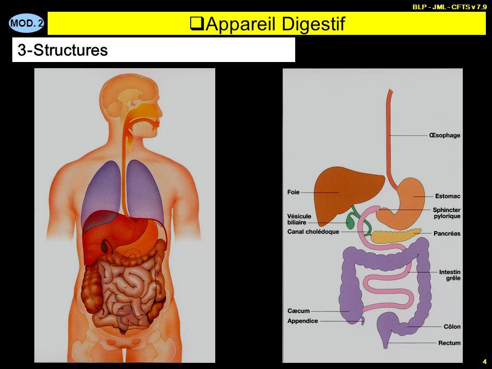 BLP - JML - CFTS v 7.9 Appareil Digestif 3-Structures