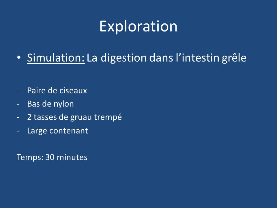 Exploration Simulation: La digestion dans l'intestin grêle