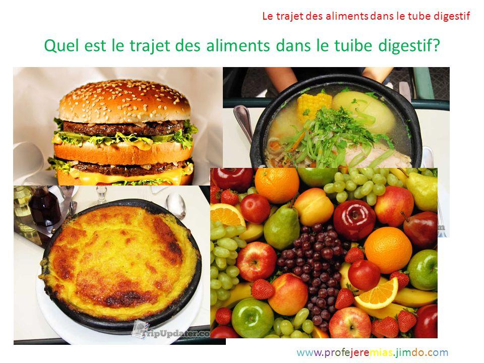 Quel est le trajet des aliments dans le tuibe digestif