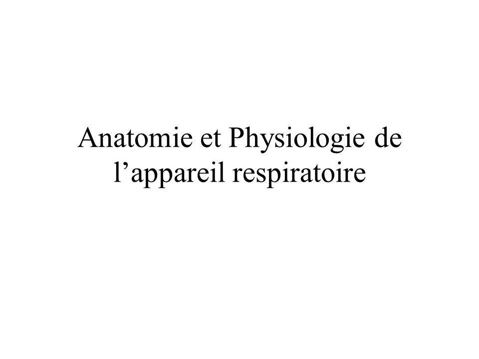 Fein Anatomie Und Physiologie Ppt Galerie - Anatomie und Physiologie ...