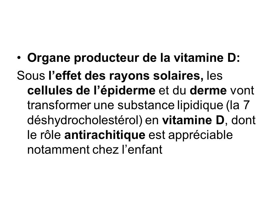 Organe producteur de la vitamine D: