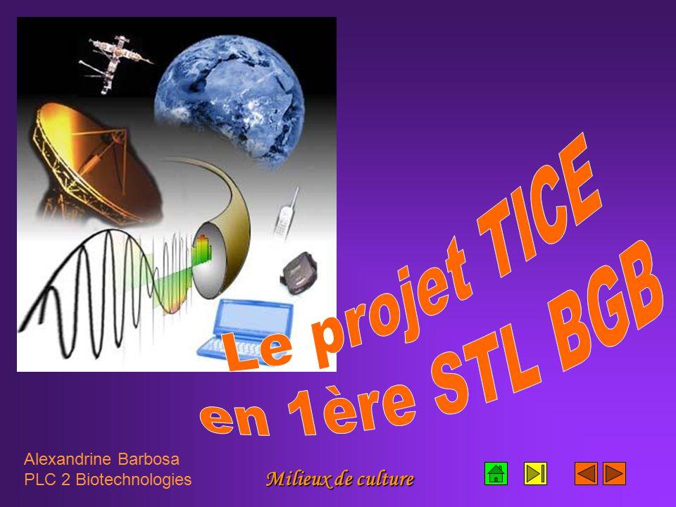 Le projet TICE en 1ère STL BGB Milieux de culture