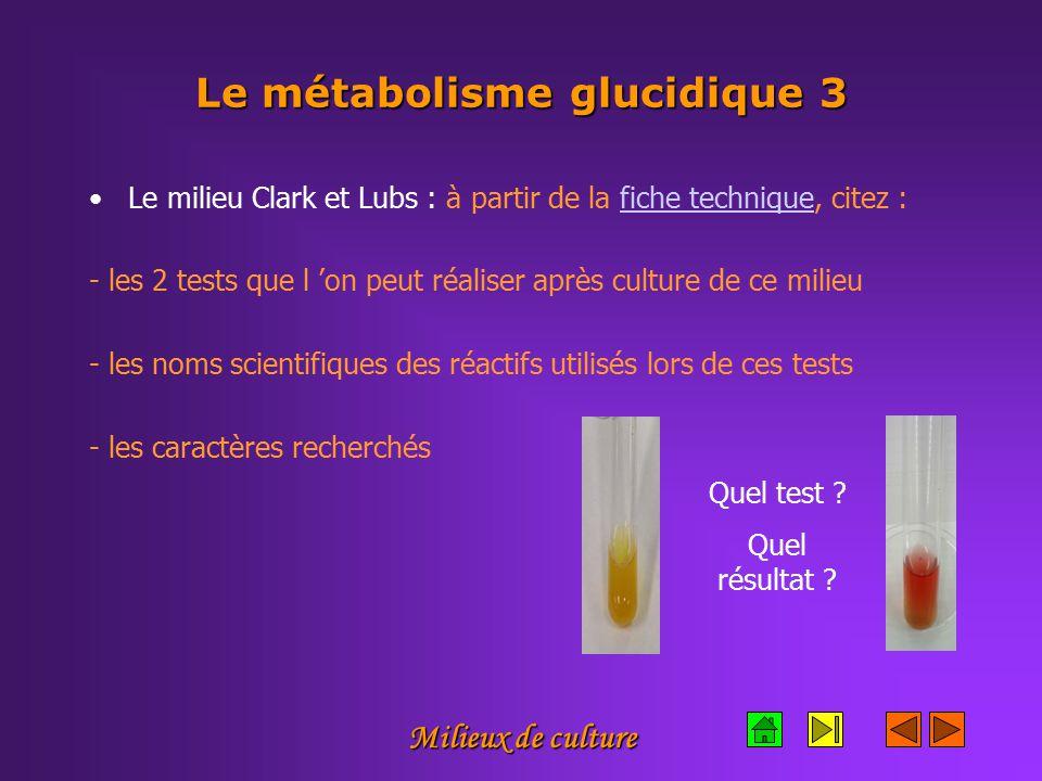 Le métabolisme glucidique 3