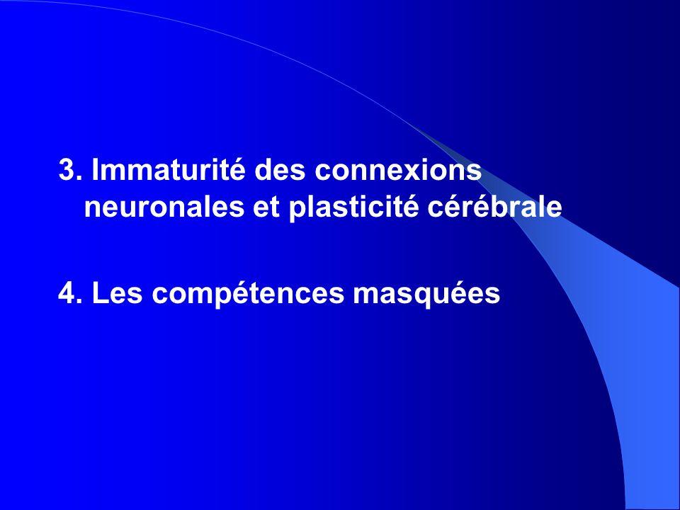 3. Immaturité des connexions neuronales et plasticité cérébrale