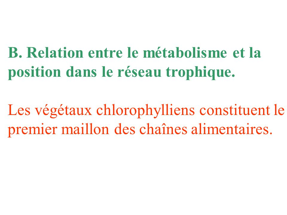 B. Relation entre le métabolisme et la position dans le réseau trophique.